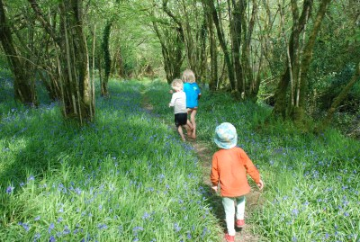 bluebell walk at The Yurt farm