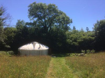 Cuckoo Yurt in the sun