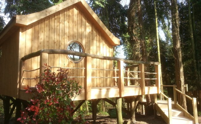 The Bird House Our Luxury Treehouse The Yurt Retreat