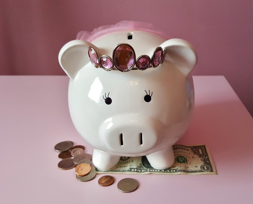 Survey Sites Piggy Bank