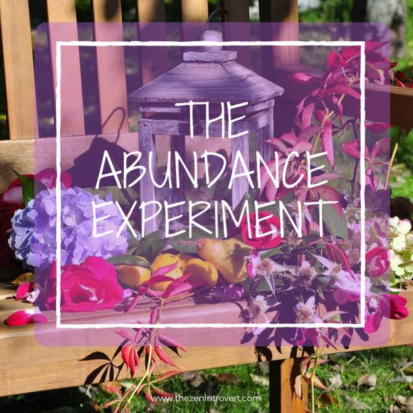 The Abundance Experiment
