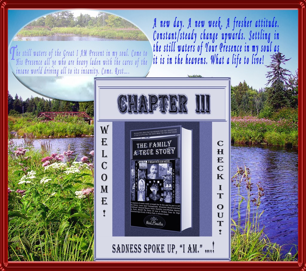 http://www.thia-basilia.com/wp-content/uploads/2018/02/A-Graphic_4_CHAPTER-3_of_The_Family.jpg