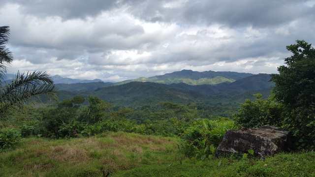 La réserve naturelle de Betampona