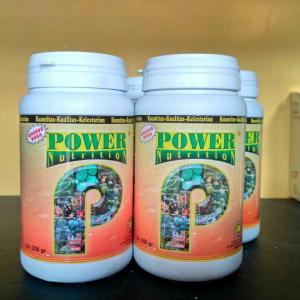 power nutrition terbaik untuk buah