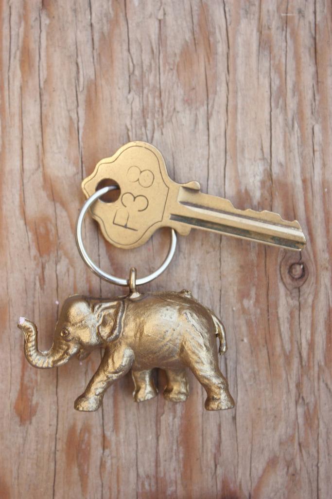 animal keychain #thingsdeeloves 1