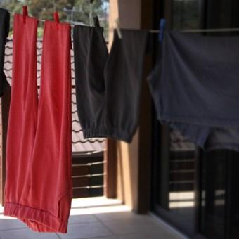 Perfect Pattern Parcel: Hudson Pants