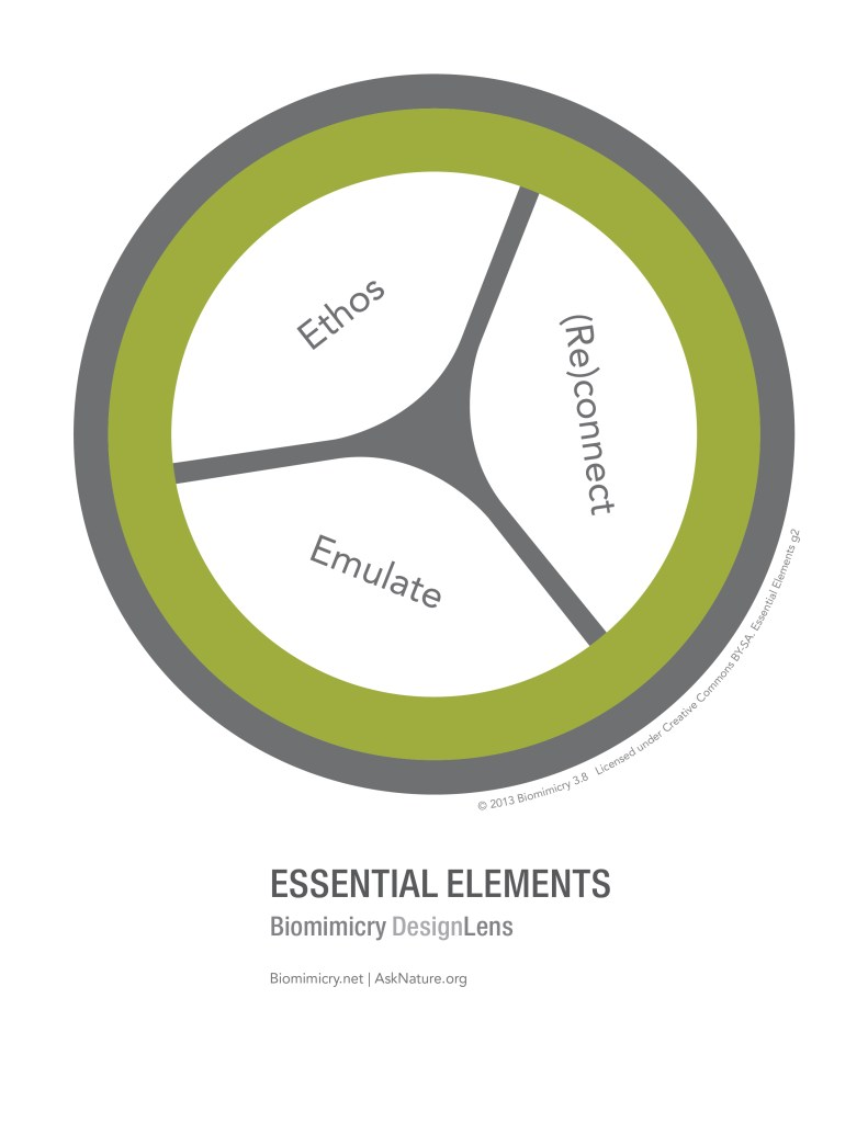 biomimicry38_designlens_essential_elements_web