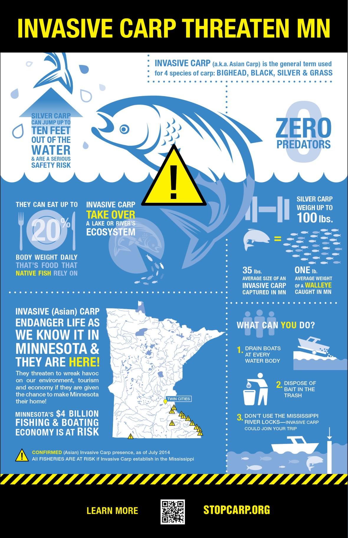Stop Carp Infographic