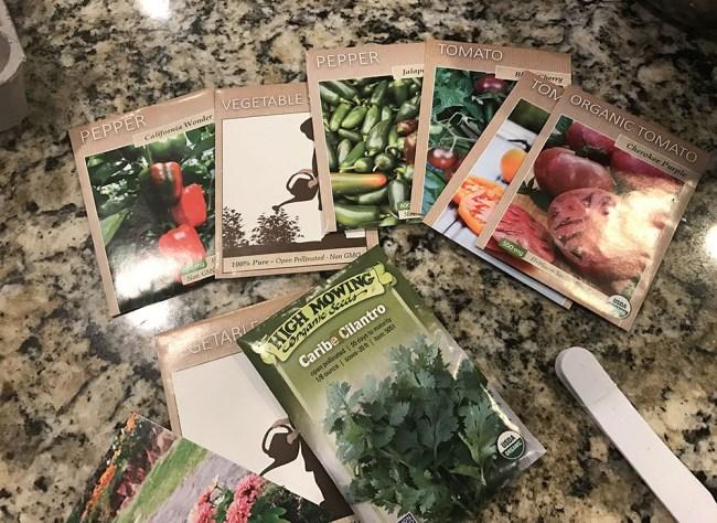garden plan 2017