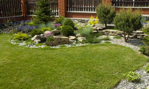 lawn services in charlotte north