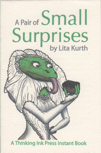 cover of Instant Book Small Surprises by Lita Kurth