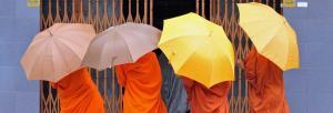 Monks in Phnom Penh, Cambodia.