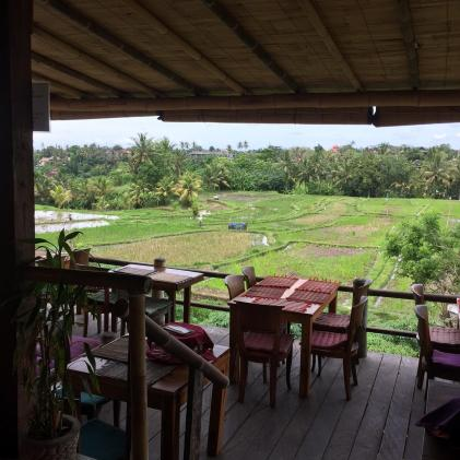 View over the rice paddies from Sari Organik Restaurant in Ubud.