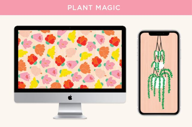 Free August 2020 digital wallpapers: Plant magic flower pattern shown on a monitor, and hanging plant illustration shown on a smartphone