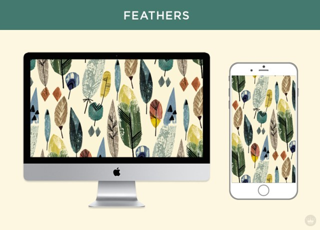Digital wallpapers with Fall feathers and leaves: Multi-color feather pattern displayed on desktop computer and smartphone screens