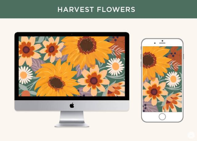 FREE November 2019 digital wallpapers: Harvest flowers shown on a monitor and iPhone.