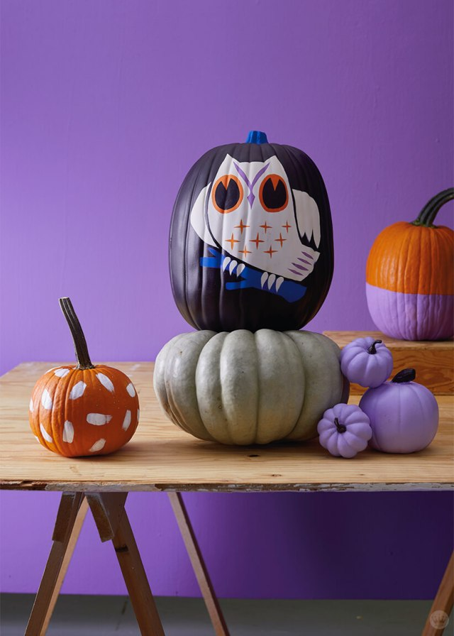 Decorated and natural pumpkins