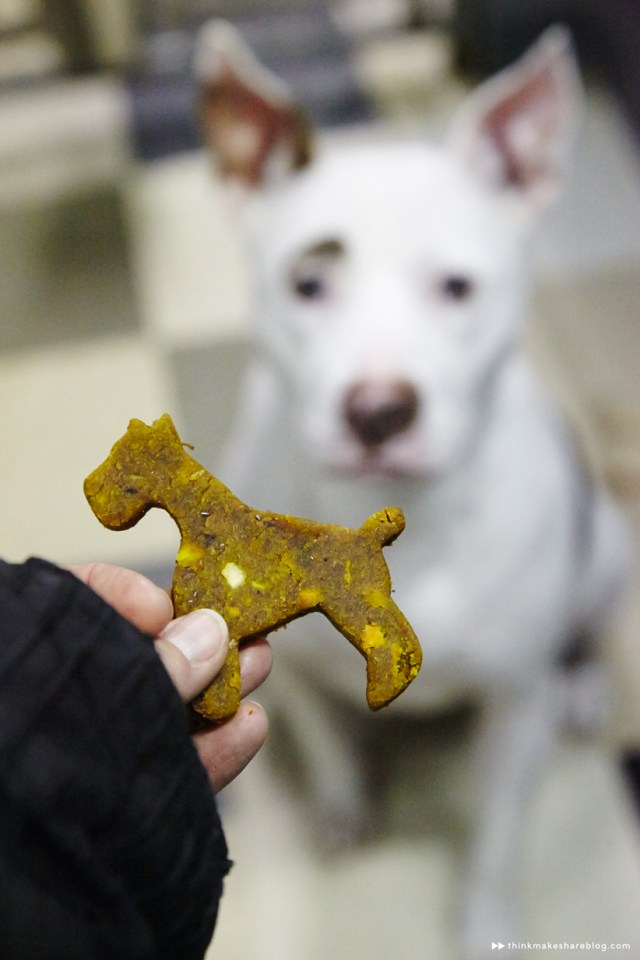 DIY dog treats cut into dog shapes to make for Mother's Day time together