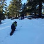 Ready, slope, sled