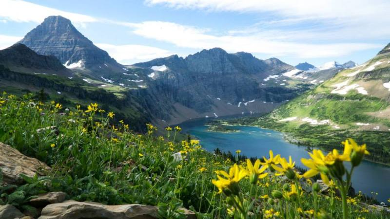 From our beautiful trip to Glacier National Park, Montana during the summer of 2015.