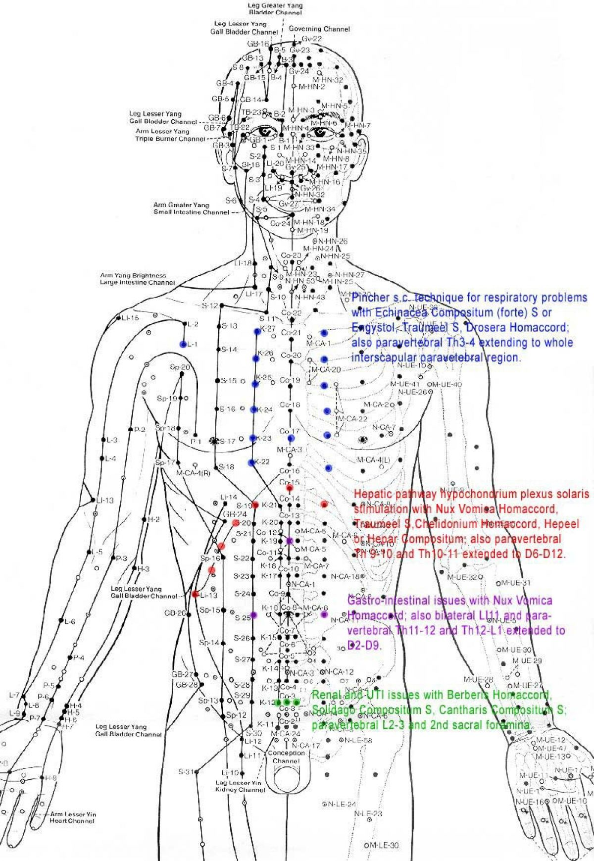 acupressure diagram of pressure points frost stat wiring the re discovery human energy field think
