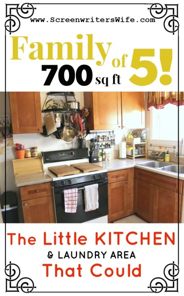 700 Sq Ft, Family of 5: The Little Kitchen and Laundry Area That Could