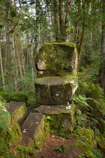 St. Patricks Chair - Altadaven