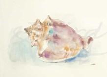 """Ocean Treasures III"" by Patti Mann"