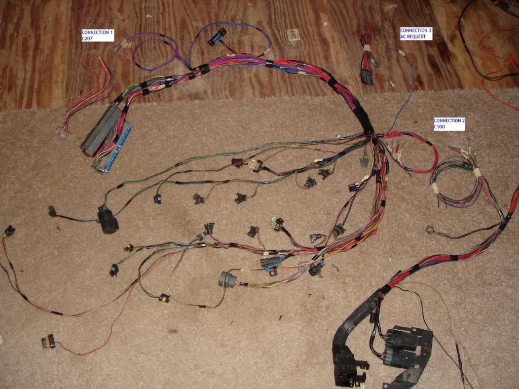 LS1 Harness Start To Finish Third Generation F Body Message Boards
