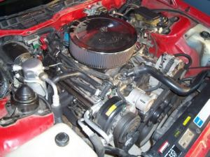 Want to remove smog hoses and systems frome My RS How to?  Third Generation FBody Message Boards