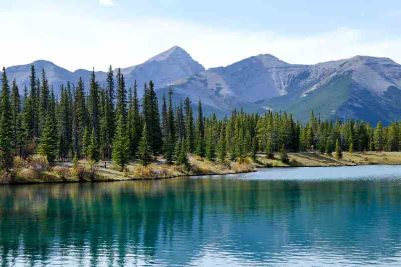3 Fall Walks in Kananaskis to Do With Your Family: Forgetmenot Pond
