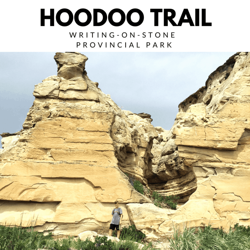 The Hoodoo Trail at Writing-on-Stone Provincial Park (4.4 KM), is a great way to get up and close with the hoodoos, and take in the most amazing views of this unique and breathtaking landscape.