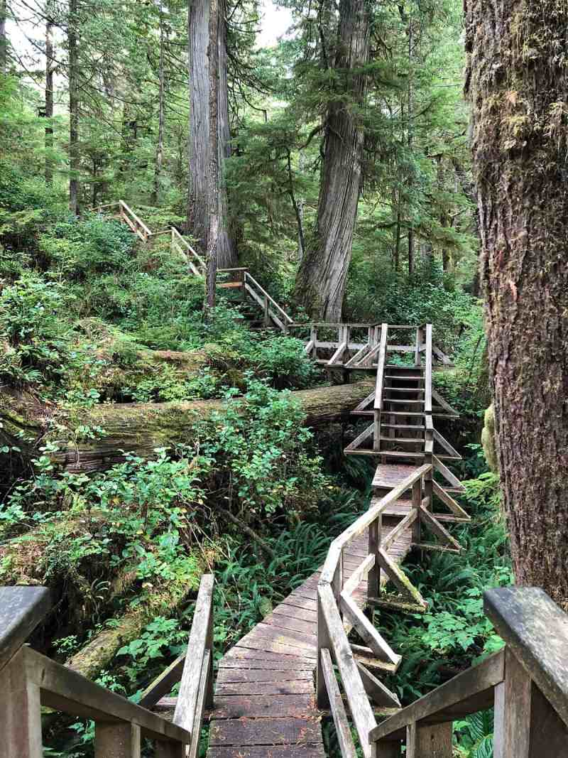 Rainforest Trail, Ucluelet