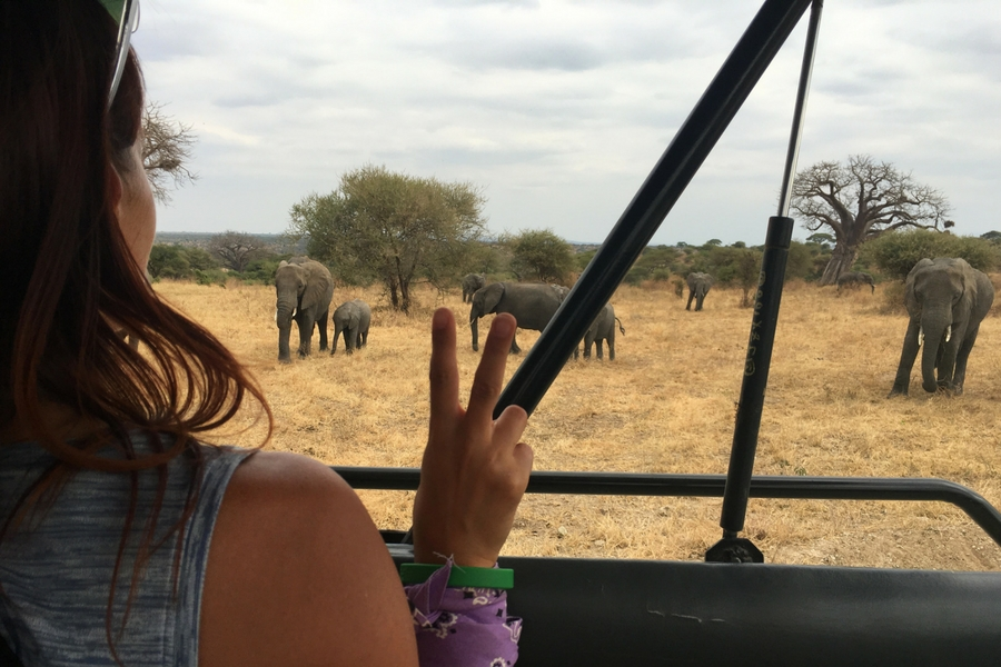 Image of me with my first view of elephants in the wild in Tarangire National Park, Tanzania.