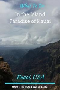 Pin image of Waimea Canyon in Kauai.