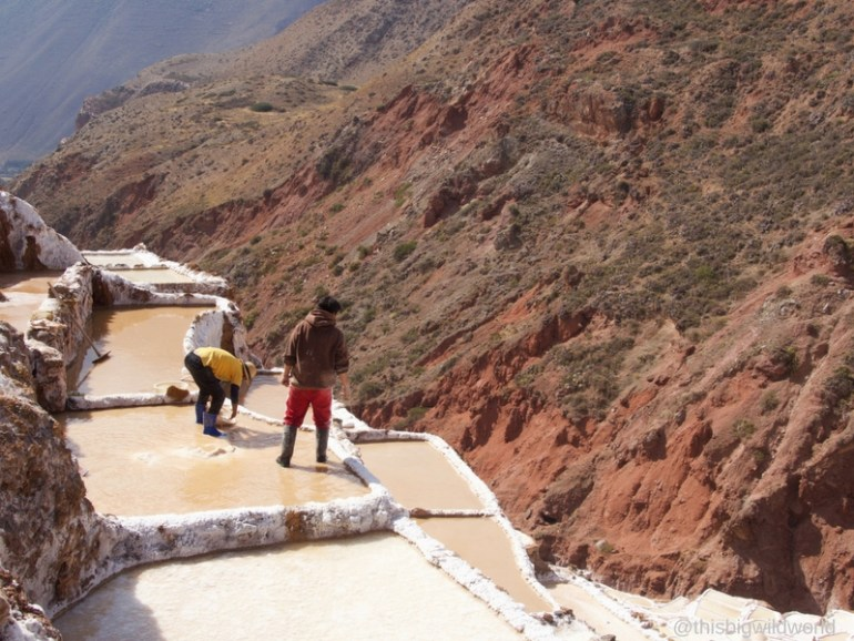 Image of two men harvesting salt from a plot at Salineras de Maras in the Sacred Valley near Cusco Peru.