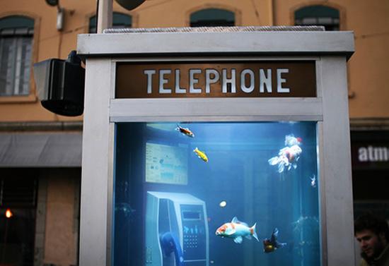 telephoneboothwithfish