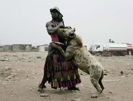 hyenapetafrica