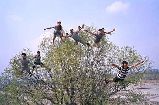 tree-gravity