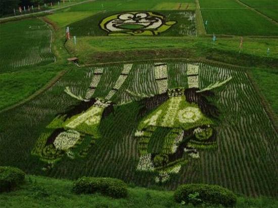 cool-rice-art