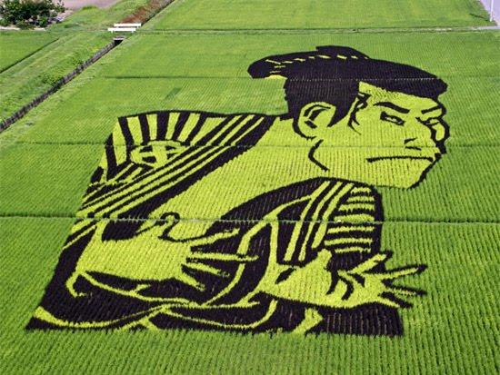 japanese-rice-art
