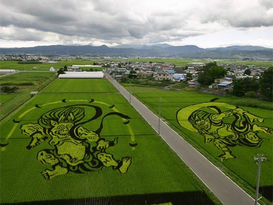 monkey-rice-art