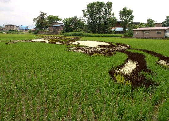 rice-art-2
