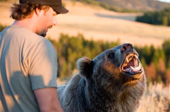 man-bear