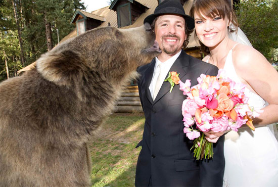 wedding-with-bear
