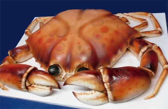 crab-cake