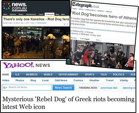 riot-dog-media