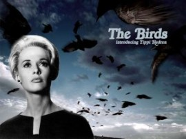 Alfred Hitchcock and The Birds