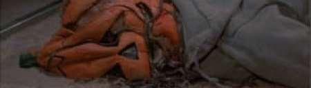 Halloween, Michael Myers and 'Little' Buddy Kurper Jr.
