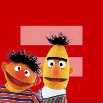 Versions of the Equal Rights Symbol on Facebook, Bert and Ernie